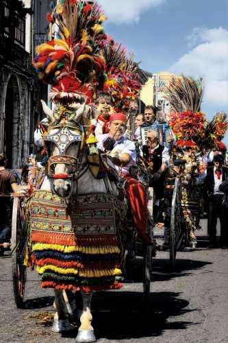 Festa di S.Alfio - Trecastagni (3286 clic)