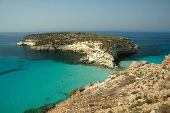 ISOLA DEI CONIGLI - Lampedusa (7143 clic)