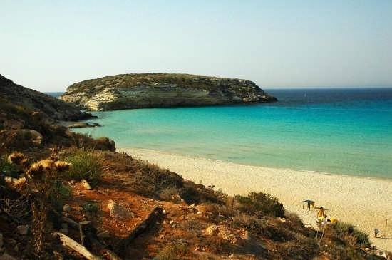 SPIAGGIA DEI CONIGLI - Lampedusa (7652 clic)