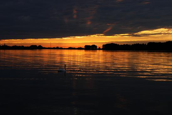 Lago Superiore  - Mantova (2663 clic)