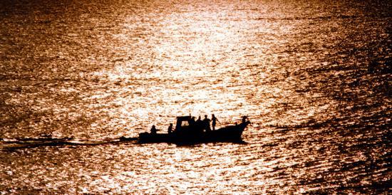 distesa d'oro - Pantelleria (3116 clic)