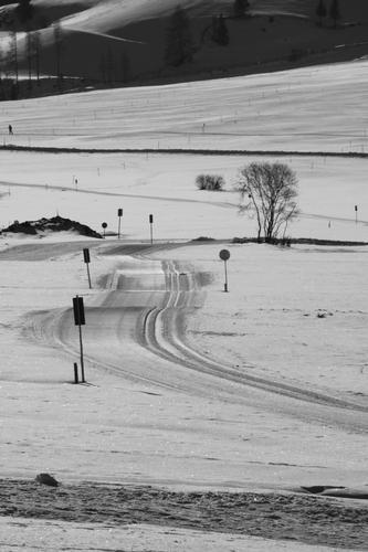 strada di ghiaccio - Resia (2049 clic)