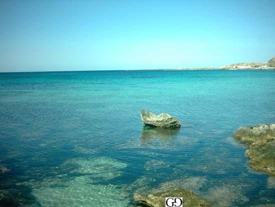 foto favignana (6571 clic)