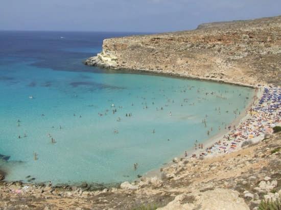 Lampedusa - Isola dei conigli (23067 clic)