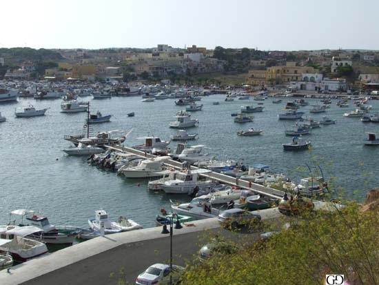 Lampedusa (3996 clic)