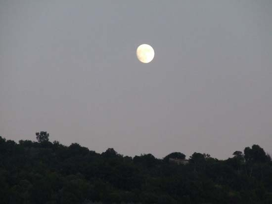 luna - Pettineo (2848 clic)