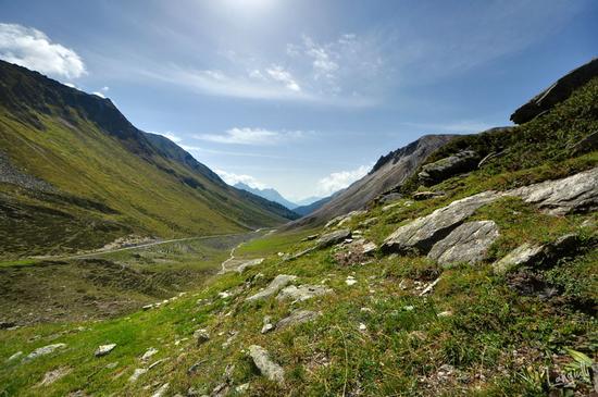 Le alpi di Livigno (2548 clic)