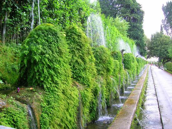 Villa d'Este Le Cento Fontane - Tivoli (2413 clic)