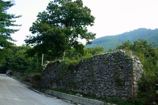 Ruderi dell'antica Serpico irpino-sannita - Avellino (1473 clic)