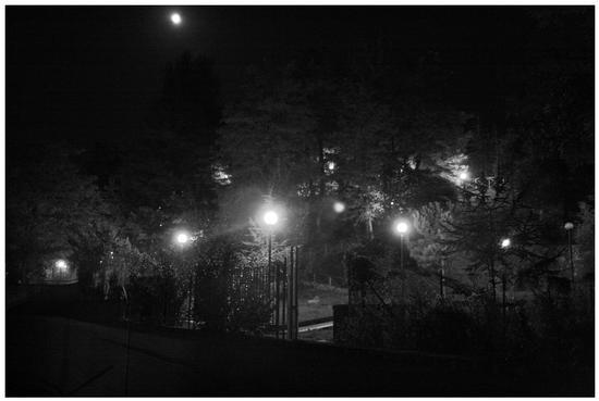 All'ingresso di un parco di sera. - Avellino (2201 clic)