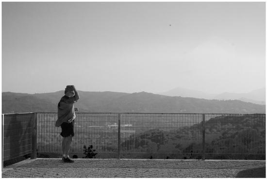 Panorama dai Feudi di S. Gregorio. Sorbo Serpico - Avellino (1838 clic)