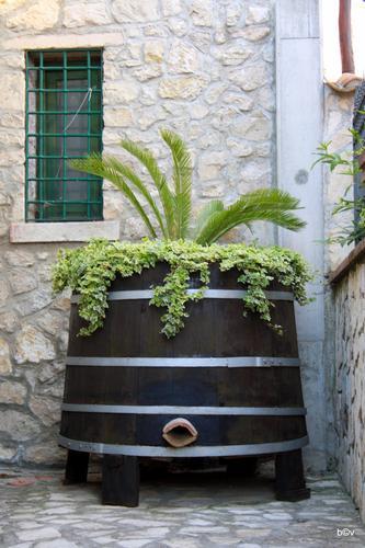 Riciclo creativo 1 - Avellino (2660 clic)