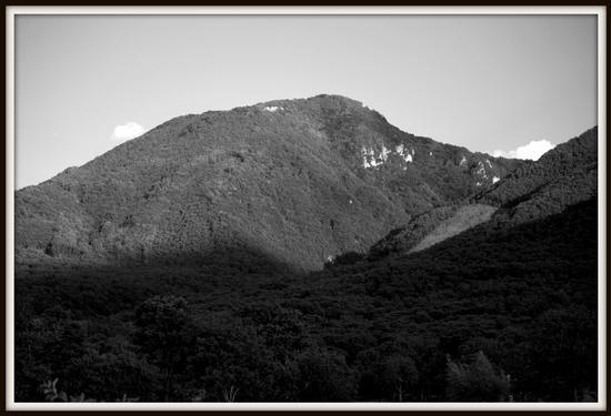 Monti d'Irpinia - Avellino (2536 clic)