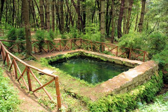 Fontana delle canne nel Parco pubblico di San Gregorio. Atripalda - ATRIPALDA - inserita il 03-Mar-11