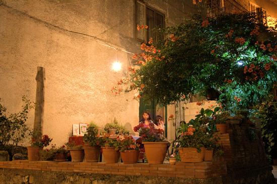 Bignonia a S.Stefano del sole. - Avellino (2622 clic)