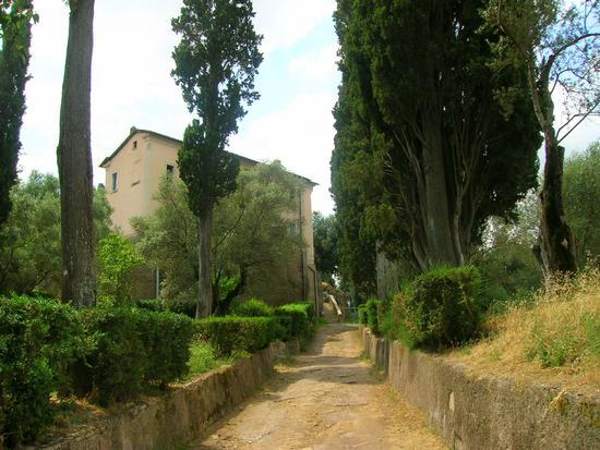Villa Adriana 1 - Tivoli (1974 clic)