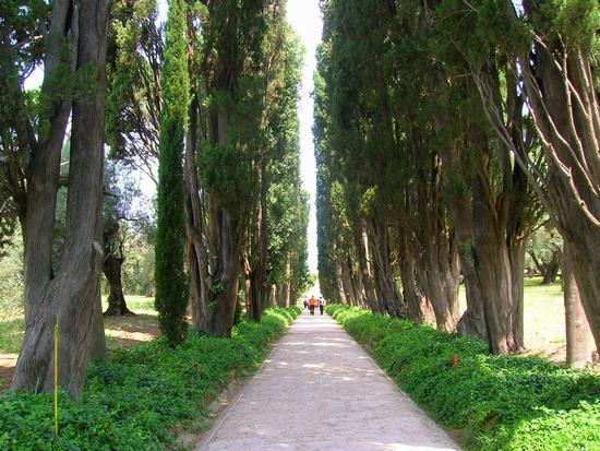 Villa Adriana 2 - Tivoli (2031 clic)
