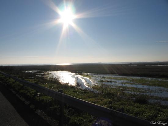Laguna  - Chioggia (2068 clic)
