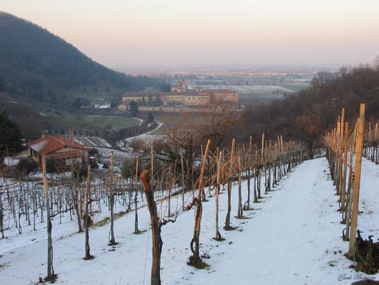 Abbazia di Praglia - Teolo (2514 clic)