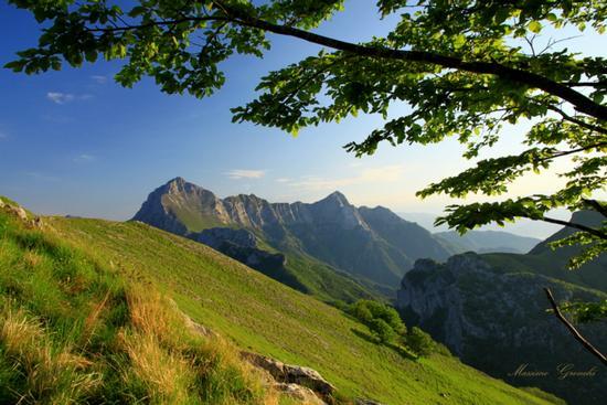 Gruppo delle Panie  - Alpi apuane (3487 clic)