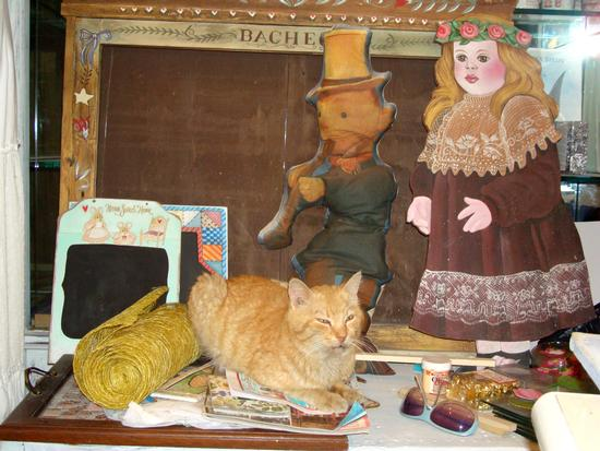 gatto tra i souvenir al bazar di Trevignano (981 clic)