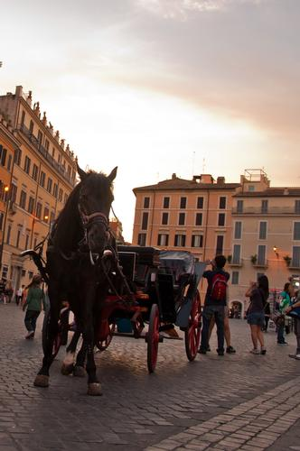Roma: Carrozze a Piazza di Spagna (1901 clic)