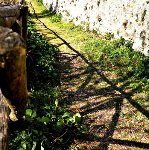 Rocca di Narni (2136 clic)