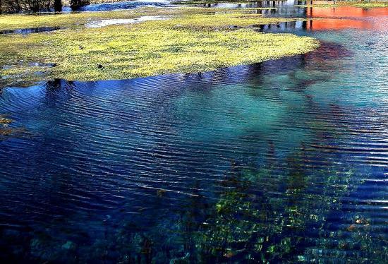 La Riserva Naturale - lago di Posta Fibreno (4690 clic)