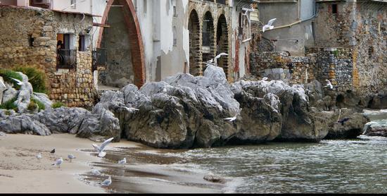 CEFALU'- Particolare del borgo marino - Cefalù (2983 clic)