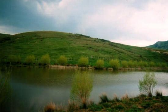 Lago Pisciotto - Floresta (4278 clic)