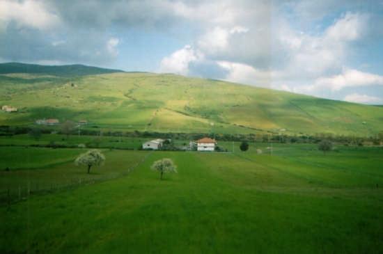 Paesaggio - Maletto (3791 clic)
