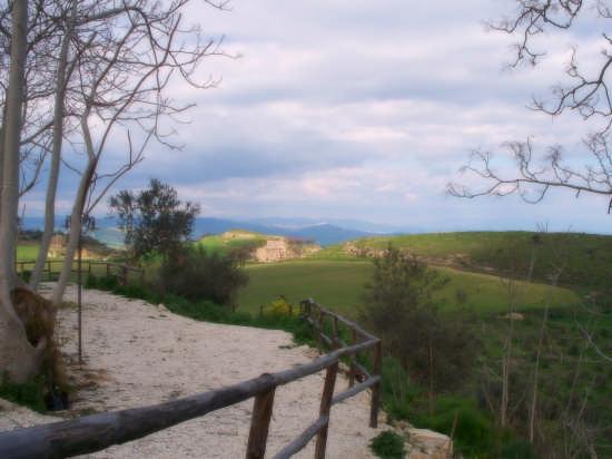 Pergusa- Paesaggio (3719 clic)