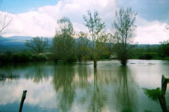 Lago Gurrida - Randazzo (4232 clic)