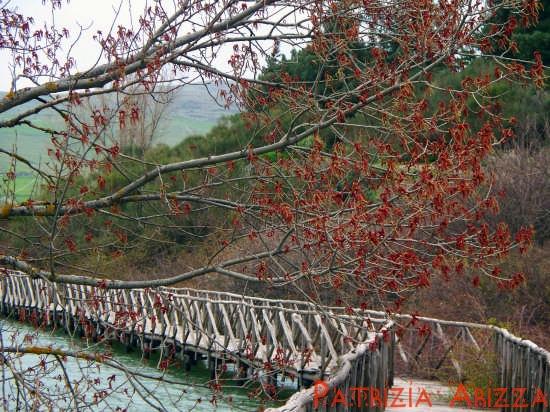 Randazzo - Lago Gurrida (4855 clic)