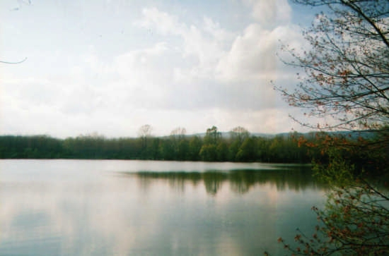 Lago Gurrida - Randazzo (5024 clic)