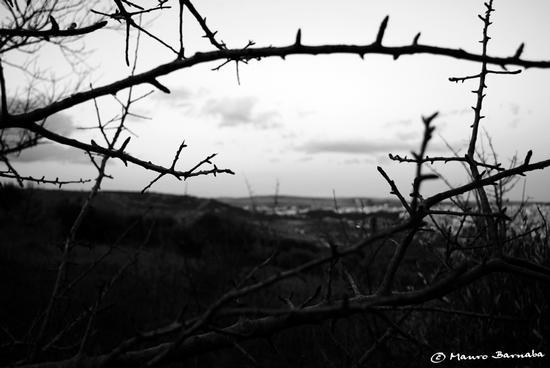 In my head... Prison - Gravina in puglia (1390 clic)