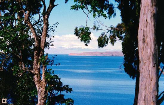Lago Titicaca a circa 4000 m. di altezza (686 clic)