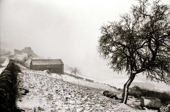 neve a Monte Lauro - Giarratana (3623 clic)