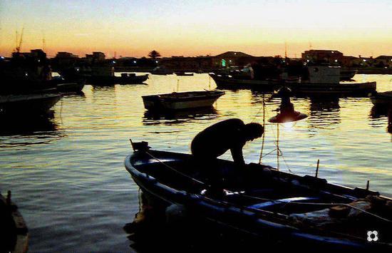 preparativi nel porto - Marzamemi (3050 clic)