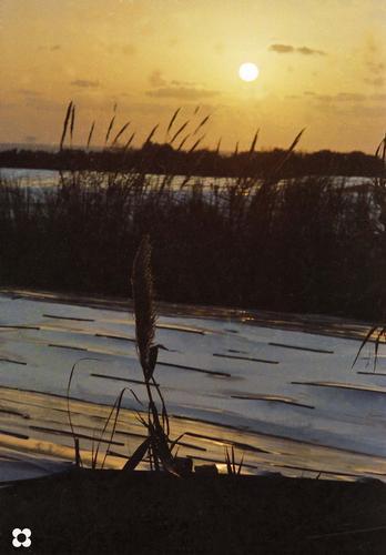 tramonto sulle serre - Donnalucata (3009 clic)