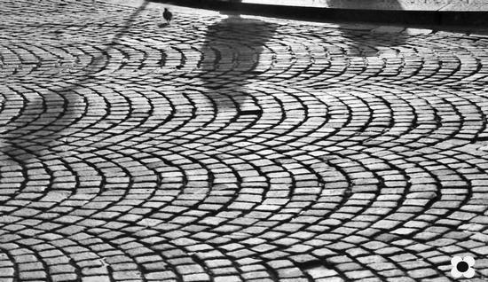 ombre sul pavé di Via Etnea - Catania (1736 clic)