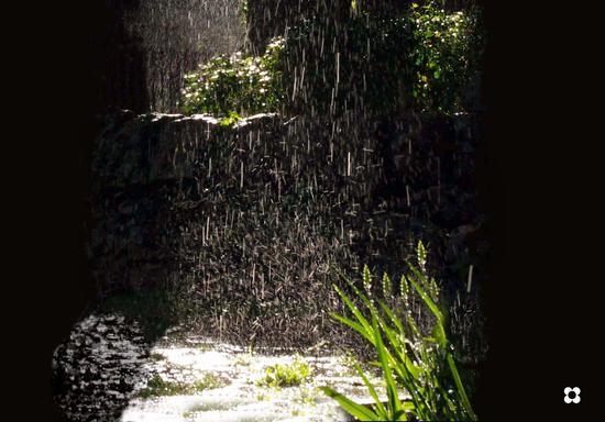 un raggio di luce fra gli alberi in un giorno di pioggia - Modica (2029 clic)