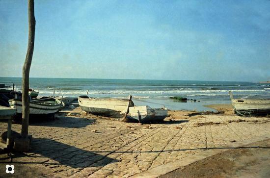 barche sul molo - Donnalucata (2649 clic)