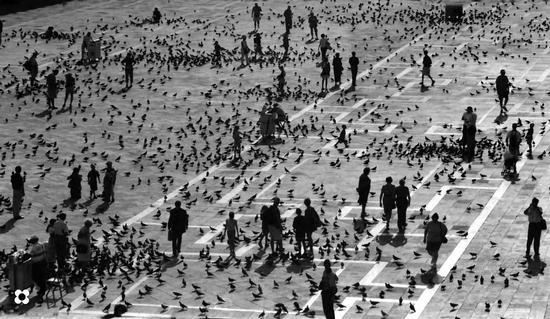Piazza San Marco '99 - Venezia (4785 clic)