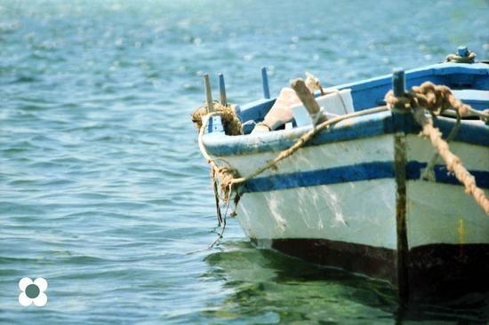 riflessi d'acqua nel porto - Marzamemi (2201 clic)