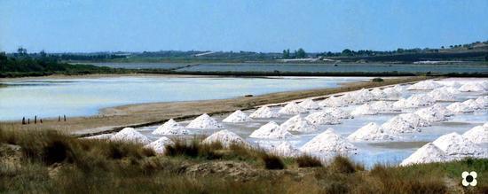 saline '89 - Portopalo di capo passero (1195 clic)
