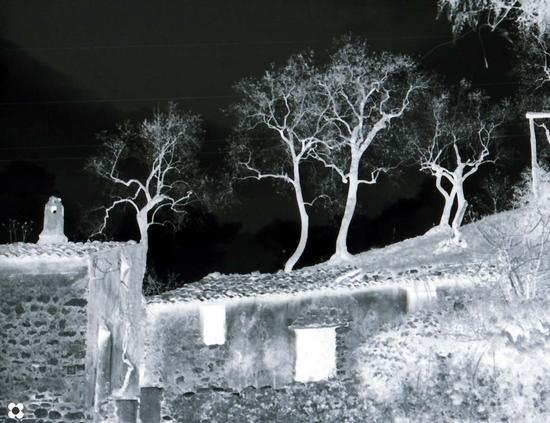 casa fantasma - Vallo della lucania (2273 clic)