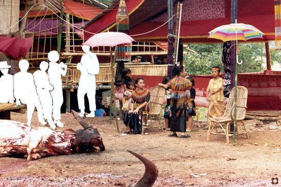Borneo, sacrifici di bufali per una cerimonia funebre (1115 clic)
