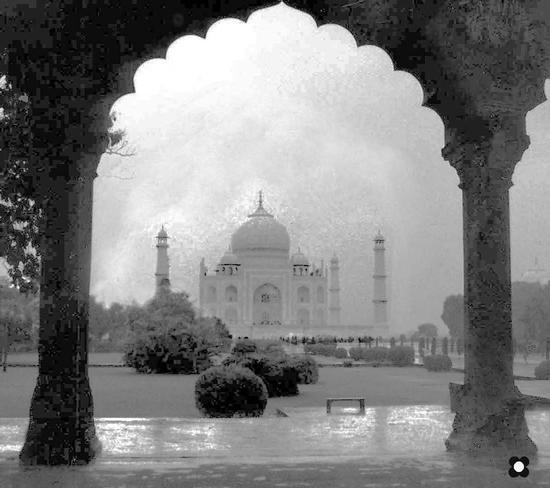 Taj-Mahal (515 clic)