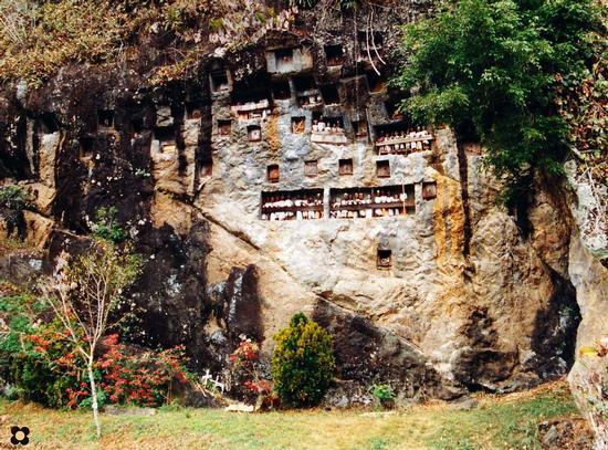 Borneo, cimitero Toraja popolo senza morte (719 clic)